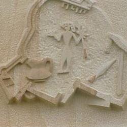 escudo trasera